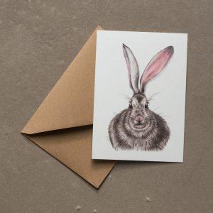 La carte postale et son enveloppe