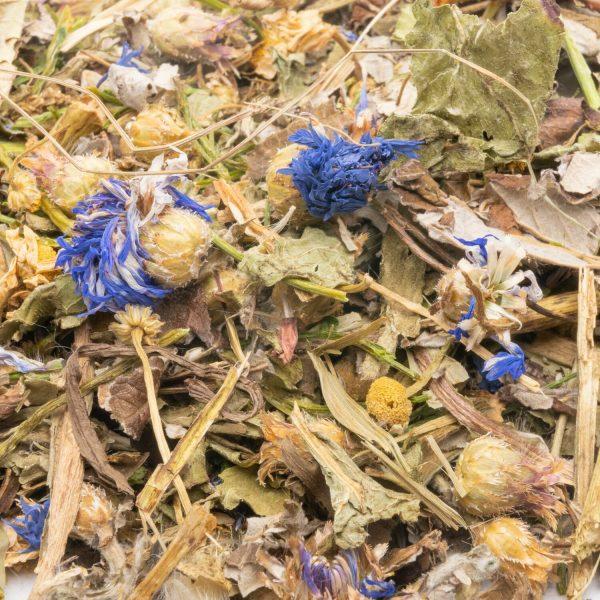 Fleurs et herbes de notre campagne